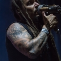 amorphis-with-full-force-2013-30-06-2013-36