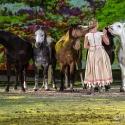 apassionata-arena-nuernberg-23-01-2016_0014
