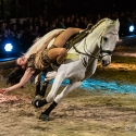 apassionata-arena-nuernberg-23-01-2016_0034