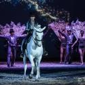 apassionata-cinema-of-dreams-arena-nuernberg-18-2-2017_0112