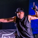 body-count-feat-ice-t-rock-im-park-06-06-2015_0003