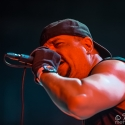 body-count-feat-ice-t-rock-im-park-06-06-2015_0011
