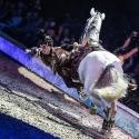 cavalluna-arena-nuernberg-16-2-2019_0004
