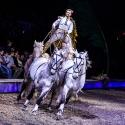 cavalluna-arena-nuernberg-16-2-2019_0042