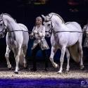 cavalluna-arena-nuernberg-16-2-2019_0047