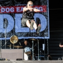 dog-eat-dog-masters-of-rock-10-7-2015_0006