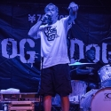 dog-eat-dog-rockfabrik-nuernberg-01-09-2013-18