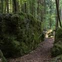 druidenhain-09-2012-19