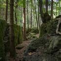 druidenhain-09-2012-5