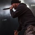 hatebreed-with-full-force-2013-27-06-2013-44