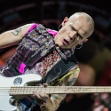 red-hot-chili-peppers-rock-im-park-2016-06-06-2016_0011