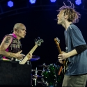 red-hot-chili-peppers-rock-im-park-2016-06-06-2016_0015