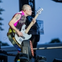 red-hot-chili-peppers-rock-im-park-2016-06-06-2016_0020