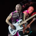 red-hot-chili-peppers-rock-im-park-2016-06-06-2016_0053