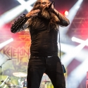 skeletonwitch-summer-breeze-2014-14-8-2014_0041