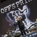 the-offspring-rock-im-park-2014-9-6-2014_0007