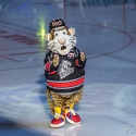 thomas-sabo-ice-tiger-vs-grizzlys-wolfsburg-arena-nuernberg-10-04-2016_0003