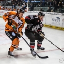 thomas-sabo-ice-tiger-vs-grizzlys-wolfsburg-arena-nuernberg-10-04-2016_0044