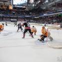thomas-sabo-ice-tiger-vs-grizzlys-wolfsburg-arena-nuernberg-10-04-2016_0058