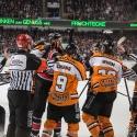 thomas-sabo-ice-tiger-vs-grizzlys-wolfsburg-arena-nuernberg-10-04-2016_0092