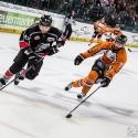 thomas-sabo-ice-tiger-vs-grizzlys-wolfsburg-arena-nuernberg-10-04-2016_0094