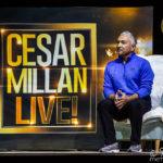 Cesar Milan – Once Upon A Dog